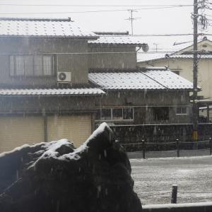 3月29日、なごり雪・・・富山市水橋