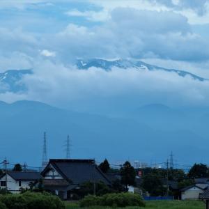 薬師岳の残雪、アジサイ(紫陽花)の色・・・富山市水橋