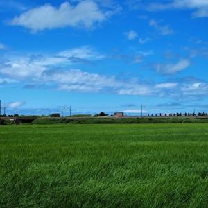 空は青く涼しい風、立山には厚い雲・・・富山市水橋