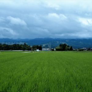 しっとりと曇り日の景色・・・上市町