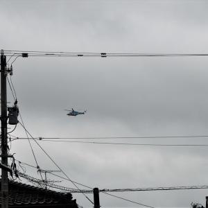 球磨川で大洪水。雨模様のなかヘリコプター、庭の花をクローズアップ・・・富山市水橋