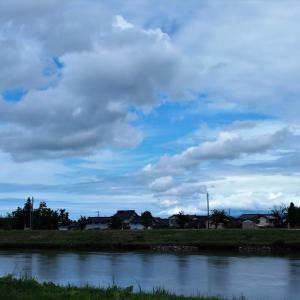青空が見え始め気分変わる、夾竹桃・イチジクの実・タチアオイ・ヨウシュヤマゴボウ・・・上市町など