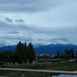 今日も曇り、シラサギ・茄子・カボチャの花・ヒマワリ・ノウゼンカズラ・・・滑川市