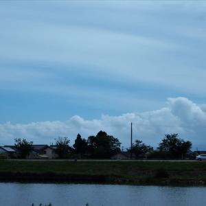 空が少し明るくなる、花とアルペンスタジアム(1)・・・富山市・常願寺川下流西岸