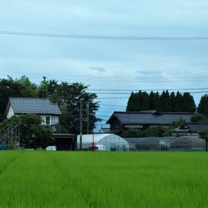 常願寺川西岸から東の対岸方向を望む(2)・・・富山市・常願寺川下流西岸