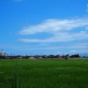 今日北陸は梅雨明けしました・・・富山市水橋