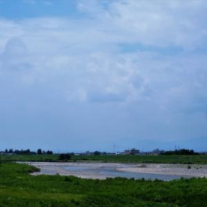 ナガサキ原爆の日、今日も暑い、平和の花にあふれてほしい・・・富山市水橋