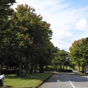秋の入口に立つ常願寺川公園・・・立山町