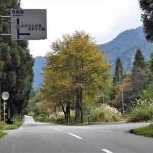 県道剱岳公園線を走る。林道伊折千石線分岐点、やがて早月川狭まる(5)・・・上市町