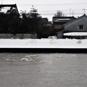 昨日は雨、今日は雪で少し冷え込み・・・富山市水橋、富山市など