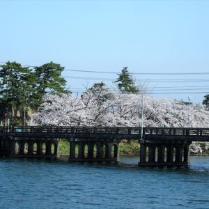 東西橋と水神社に咲く桜、水際に桜のトンネルを作る風情・・・富山市水橋