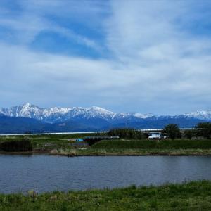 初夏の雰囲気が感じられるのに、立山連峰の白はうれしい色・・・富山市水橋