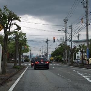 滑川の県道1号線の街路は、雨模様ですがアメリカハナミズキ・ツツジの花など明るい・・・滑川市
