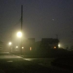 濃霧の中の散歩