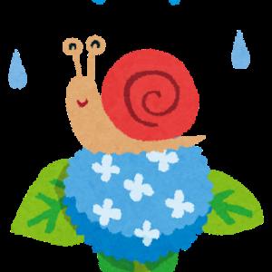 梅雨入り後、久しぶりの雨を喜ぶGちゃん