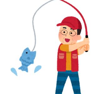 100均のサビキで、久しぶりのアジゴ釣り