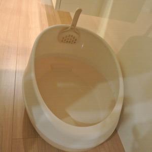 トメの新しいトイレがやってきた~