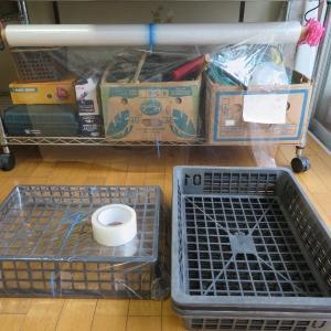 育苗バットで実生苗用ミニ温室を作ってみました♪
