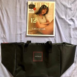 オトナミューズ 2020年12月号  付録 ジョエル・ロブショ ンのレジカゴショッピングバッグ