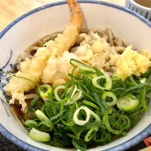 うどん讃く 大阪 福島界隈で朝活麺活 全粒粉入りむちむちうどん