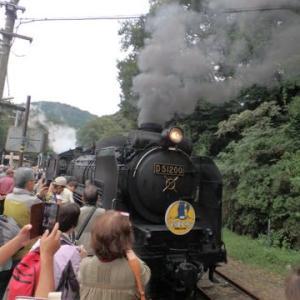 帰国旅行記3:石炭で走る「蒸気機関車SL山口号」に乗って、津和野民宿まで。