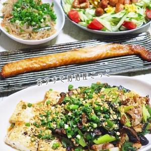 酔いどれDAY☆豚バラと九条ネギとのガーリック豆腐ステーキとかで晩酌