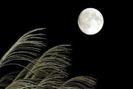 中秋の名月と満月のお知らせ。