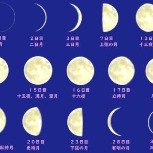 占いミールから新月のお知らせ。