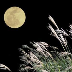 占いミールから十五夜と満月のお知らせ。
