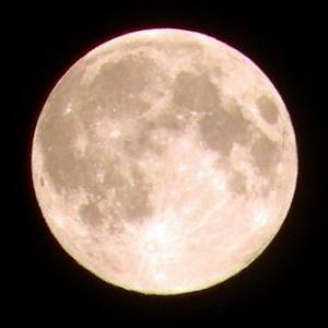 今日は満月ですよ~