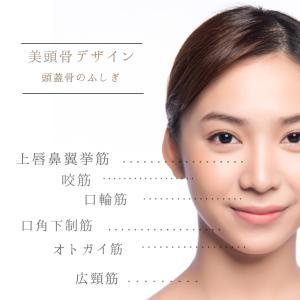 美頭骨デザイン 養成コース体験説明会 参加者募集中!