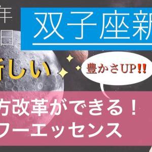 5/23 ふたご座新月☆新しいやり方で豊かさアップ!