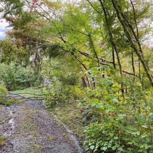 台風19号過ぎて・・・「石積みの家」は大丈夫です。