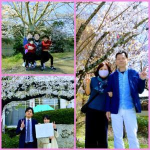 春 🌸 家族 🌸 桜