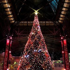 【ディズニーバケパ体験記】 2つのパークの「ディズニー・クリスマス」を満喫する 2DAYSの特典内容は?