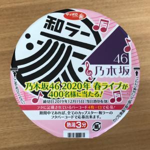 和ラー 北海道札幌スープカレー風 〜1度で2度美味しいカップ麺に迫る!〜