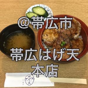 帯広 はげ天 本店 〜自社ビルの大箱で豚丼ソーシャルディスタンス!〜
