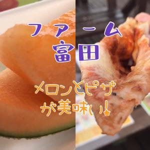 ファーム富田 〜絶品メロンとラベンダーとピザを満喫!〜