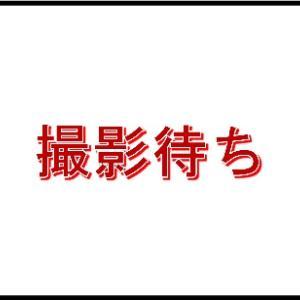 【2019種親個体達】(その6)