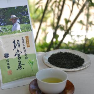 EM活用 農薬不使用栽培「朝宮茶」