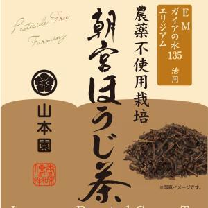 農薬不使用栽培「朝宮ほうじ茶」