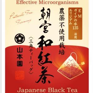 EM活用 農薬不使用栽培 「朝宮和紅茶」