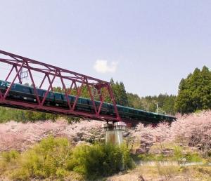 桜の花咲く丹波を駆け抜けるトワイライトエクスプレス瑞風