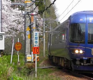 満開の桜の脇を駆け抜ける京都丹後鉄道(丹鉄)のKTR8000形(丹後の海)