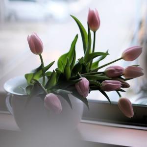 春よ来い。