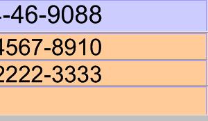 臨時休診のお知らせとFileMakerProで電話番号一括検索する方法【京都府 宇治市 いちのさか動物病院】