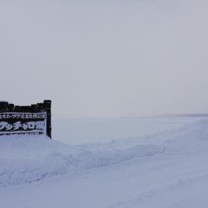 北海道のウユニ塩湖・クッチャロ湖はホントの塩湖のようになっていました