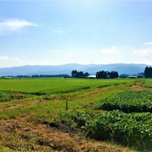日本の夏の原風景は東北にあるのだ