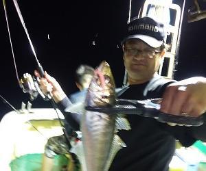 イカ釣って、魚も釣って、外道・・?高級魚