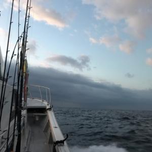 秋刀魚パターンのキハダキャスティング
